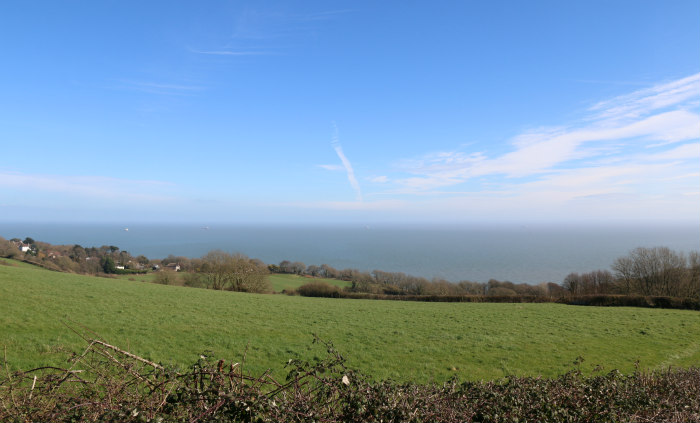 Isle of Wight Countryside 5